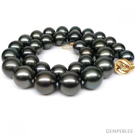 Collana perle di Tahiti nere, bronzo, blu - 11/13mm - AAB