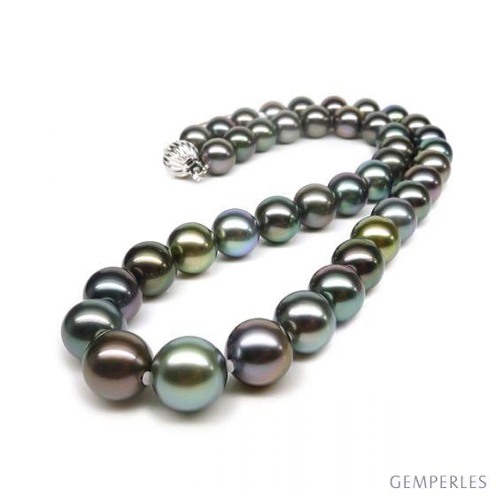 Collana in perle coltivate dei Mari del Sud - Perle 9/10mm multicolor - 3