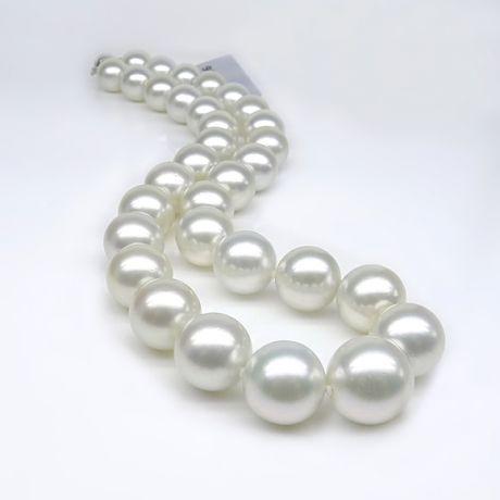 Collana grosse perle di coltura australiane bianche - 12/14.7mm